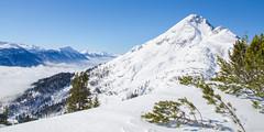 the mountain above the clouds (peter-goettlich) Tags: tirol austria österreich ehrwald handschuhspitze marienbergjoch grünsteinumfahrung ski tour mountaineering mountain skimountaineering backcountryskiing alpen alps miemingerkette wolken clouds