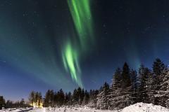 Z19_0194 LT (Zoran Babich) Tags: winter snow lapland lappi finland suomi northernlights auroraborealis