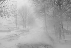9/03/19. blizzard (Listenwave Photography) Tags: метель буран gsm grandsolarminimum город снег буря city urban snowing snow blizzard vps400 foveon listenwavephotography