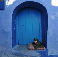 Chefchaouen, Morocco, January 2019 D700 375 (tango-) Tags: chefchaouen bluecity villaggioblu bluevillage morocco maroc 摩洛哥 marruecos марокко المغرب