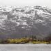 Fjord settlement