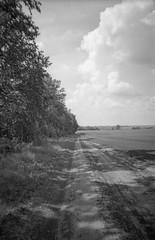 *** (PavelChistyakov) Tags: agfa apx iso100 film 35mm canon slr negative bw black white camera monochrome mono russia road field sky village countryside tula region oblast