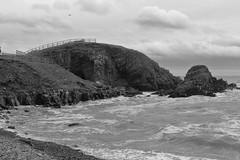 Cliffs,Collieston_Mar 19_518 (Alan Longmuir.) Tags: monochrome grampian aberdeenshire collieston cliffs