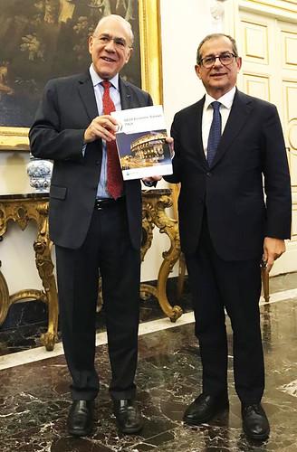 Presentation of the Economic Survey of Italy 2019