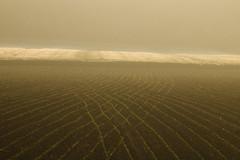 20180505-Canon EOS 750D-8925 (Bartek Rozanski) Tags: mozet namur belgium ardennes belgie belgique ardennen spring field agriculture forest sunrise