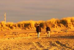 2018 - 11 Noordwijk (Steenvoorde Leen - 11.3 ml views) Tags: 2018 noordwijk noordwijkaanzee strand beach kust kuste badplaats zuidholland
