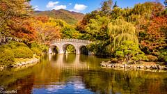 Haetalgyo bridge in autumn at Bulguksa Temple, Gyeongju, South Korea (patuffel) Tags: bulguksa temple foliage autumn korea south 2018 pond brdige reflection unesco worldheritage leica m10 28mm 20 summicron haetalgyo bridge gyeongju toham