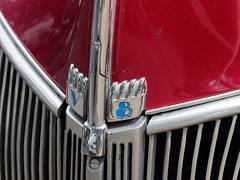 Ford V8 (steverh) Tags: ford v8 melbourne victoria australia