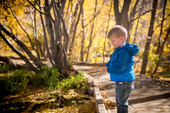 little man at cascade springs (Sam Scholes) Tags: alpineloop autumn utah twoyearsold cascadesprings americanforkcanyon littleman 2yearsold fall
