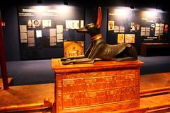 Anubis, Egyptian God of the Dead / Анубис, египетския бог на отвъдното (mitko_denev) Tags: египет древенегипет съкровище античност древност ancientegypt archeology archeologie treasure antiquity egypt ägypten altägypten antiquität тутанкамон tutankhamun pharao фараон gold злато exhibition ausstellung изложба музей museum