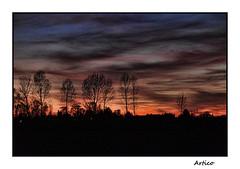 Sunset Gradiscutta (Artico7) Tags: sunset tramonto gradiscutta varmo friuli italy digital colour color red sky cielo colore fuji xe1 trees alberi