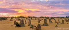 The Pinnacles Desert (JLoyacano) Tags: australia cervantes desert jacobloyacano nambung nambungnationalpark sunset thepinnacles wa westernaustralia landscape perth pinnacles pinnaclesdesert rock rocks sunrise