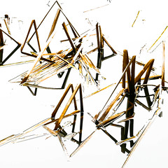 water reeds (~SG) Tags: abstract reflection water reeds geometry angles lines whiteground hss