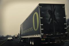 Ducks homeward bound (fcruz62) Tags: interstate i5 road highway nikon d750 oregon ducks uofo