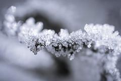 Eiskristalle (juergen_gryska) Tags: sw schwarzweiss eis makro monochrom abstrakt