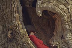 Untitled (giorgibel...) Tags: selfportrait wood red intimacy beautifulplace beautiful