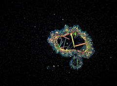 "Mare Aquam ""galactica"" (Saul G.) Tags: macro macrophotography macroworld macrolife micro microphotography nikon d7200 optiphot"