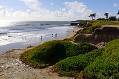 sunday in february (peaceblaster9) Tags: sky cloud ocean sea beach coast sunlight sunshine santacruz california fujifilm x100f color 空 雲 海 海岸 水平線 people dog ビーチ 浜辺 サンタクルーズ カリフォルニア