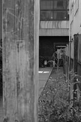 RICOH GR 46 50mm crop (HAMACHI!) Tags: tokyo 2019 japan ricoh ricohgriii ricohimaging ricohgr gr gr3 griii loadtest cameratest monochrome blackandwhite shibuya architecture exterior