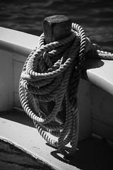 Riggings / Cordages (CTfoto2013) Tags: closeup grosplan detail water ocean sea mer blackandwhite noiretblanc blancoynegro depth amarre corde filin boat ship bateau mysticseaport gx8 lumix dof monochrome bn bw nb shadow light rigging cordage