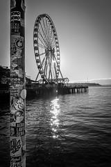 Seattle-1430 (Yale Gurney Pictures) Tags: ferriswheel ferry fish landmark photo photography pike pikemarket pikeplacemarket pugetsound seattle spaceneedle yalegurney washington usa
