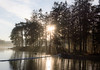 Beautiful morning (jurgita_zuk) Tags: sun sunrays beautiful scenery landscape trees forest water sunray sunrise nature naturebeauty naturelover sweden sverige gothenburg göteborg ngc