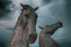 The Kelpies - closer I (swissgoldeneagle) Tags: aneaglaisbhreac rx100m4 thefawkirk sony falkirk sonycamera horsehead sculpture scotland kelpie rx100 unitedkingdom skulptur horseheadsculptures skulpturen thekelpies greatbritain sculptures schottland vereinigteskönigreich gb