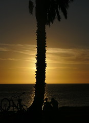 Happy Valentine to all my Flickr friends! (louise peters) Tags: happyvalentine sunset sundown zonsondergang beach strand coast kust sea seascape zee zeegezicht palmtree palmboom bikes fietsen people mensen