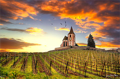 Spike (Jean-Michel Priaux) Tags: hunawihr alsace france church abbey abbaye chapel chapelle sly sun sunset line priaux vine vigne clouds colors spear hdr
