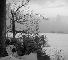 Off in the distance  20190215_172500 (LarryJ47) Tags: samsung winter farm equipment stone walls trees snow bw black white blackwhite landscape days gone by antiquity olden