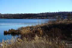DSC04729 (bluesevenxp) Tags: geiseltalsee mücheln marina lake see ufer floating