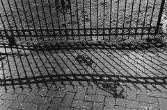 Leica_m_BW_63608_M35F14V1_APX_Bad_Hersfeld (OPTIK AXIS) Tags: leicam42 summiluxm11435v1 台灣 ライカmレンズ 単焦点レンズ フィルム film leitzwetzlar leica leicacamera doublex 黑白 blackandwhite garylevel ライカ rf カメラ camera summiluxm 135 銀塩 写真 底片 膠卷 monochromatic blackandwhitefilm germany badhersfeld agfa agfaapx400