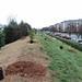 Ayrsley_Tree_Planting_2019_ (34)