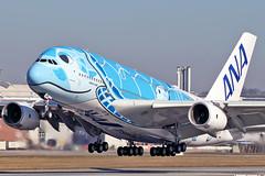 Airbus A380-841 - F-WWSH - XFW - 27.02.2019(9) (Matthias Schichta) Tags: hamburgfinkenwerder xfw edhi airbus a380 fwwsh ana allnipponairlines ja381a planespotting flugzeugbilder