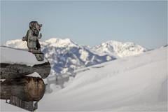 Ellmau . Tyrol (:: Blende 22 ::) Tags: austria österreich wintertime snow mountains ski fog clouds white bluesky canoneos5dmarkiv holiday tirol tyrol wilderkaiser söll sun star landscape canonef70200mmf4lisiiusm ellmau