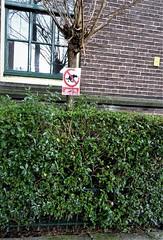 11_vreemd_macel (Macel Heyboer) Tags: vreemd strange stmartensonsbeekkwartier arnhem vanslichtenhorststraat janlighthartschool geenhondentoilet dog animal dier beest hond honden pet