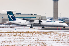 Westjet_Dash8-q400_C-GDEW_YYZ_FEB19 (Jonas_Evrard) Tags: aviation airport aircraft airplane airliner spotting spotter photography planespotting plane planes planespotter