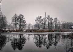 trees and chimney (KRR_3) Tags: sony a6000 nex selp18105g snow ice winter lake pond tree landscape poznan poznań antoninek