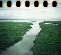 Across the Marsh Grass (ifleming) Tags: c41homeprocessing tetanalcolortech instamatic 126film cartridgereload kodakgold200 agfamatic300sensor cumbria grangeoversands