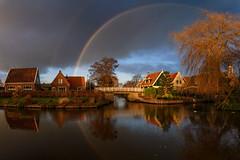 Rainbow at sunset (Julysha) Tags: panorama rainbow derijp thenetherlands noordholland rain reflection village lr 2019 winter january d850 landscape sigma241054art tree sunset evening