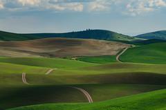_DSC2525 (Brian.Schick) Tags: palouse washington wheat rolling hills green