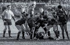 Bridgnorth Ladies Rugby_-25 (Andy..D) Tags: bridgnorth bridgnorthrugbyclub d500 ladies lady rugby candid sport sporty woman women girls mud shropshire lycra game balls womensrugby