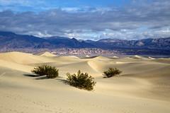 Mesquite Flats Sand Dunes (BDFri2012) Tags: mesquiteflatsanddunes sanddunes sand sanddune deathvalleynationalpark deathvalley desert desertsouthwest nationalpark vista view california ca clouds mountains landscape