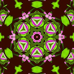 Green Pink Flowers (Kombizz) Tags: kombizz kaleidoscope experimentalart experimentalphotoart photoart epa samsung samsunggalaxy fx abstract pattern art artwork geometricart ml 3a224796a2 manipulation greenpinkflowers pinkgreenflowers