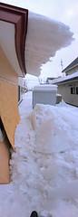 Another Day, Another Glacier Fall 2 (sjrankin) Tags: 19february2019 edited snow ice roof weather winter thaw window board snowbank kitahiroshima hokkaido japan panorama east
