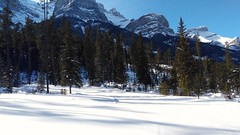 First day out in a month! (altamons) Tags: altamons xcountry winterland winter snow ski rockies canadian kcountry kananaskis canada alberta canmore banff mountain canadianrockies kananaskiscountry nordiccentre canmorenordiccentre banffnationalpark rundle mountrundle