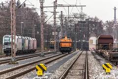 02_2019_02_09_Wanne_Eickel_Üwf_6193_825_Rpool_6193_831_ELOC_ES_64_U2_-_012_6182_012_DISPO_6193_555_ATLU_WHE_27 (ruhrpott.sprinter) Tags: ruhrpott sprinter deutschland germany allmangne nrw ruhrgebiet gelsenkirchen lokomotive locomotives eisenbahn railroad rail zug train reisezug passenger güter cargo freight fret herne wanne eickel wanneeickel eloc atlu db dispo nrail rpool whe 27 1275 6182 6193 es64u2 ell netz instandhaltung mrce dispolok stellwerk üwf outdoor logo natur