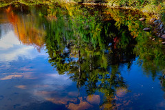 Topsy turvey world (FotoFloridian) Tags: fallcolors autumn trees water cloudsky blue red reflection stream sony alpha a6000 nik