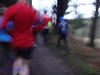 DSC09745 - Whinlatter Forest parkrun 2018 12 29 (John PP) Tags: johnpp parkrun whinlatter forest lake district run hills hilly cumbria 29122018 jog walk winter 29december2018