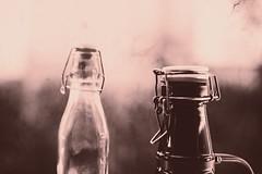 Flasche zu (Pascal Volk) Tags: botellas bottles flaschen vacía empty leer closeup nahaufnahme bokeh dof depthoffield canoneos6d sigma50mmf14dghsm|art 50mmf14 50mmlens unpointquatre onepointfour niftyfifty canonspeedlite430exiiirt canonspeedlite600exiirt canonspeedlitetransmitterste3rt manfrotto mt055xpro3 468mgrc2 dxophotolab dxoanalogefexpro nikcollection bokehlicious